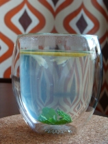 Thermo-glass cup